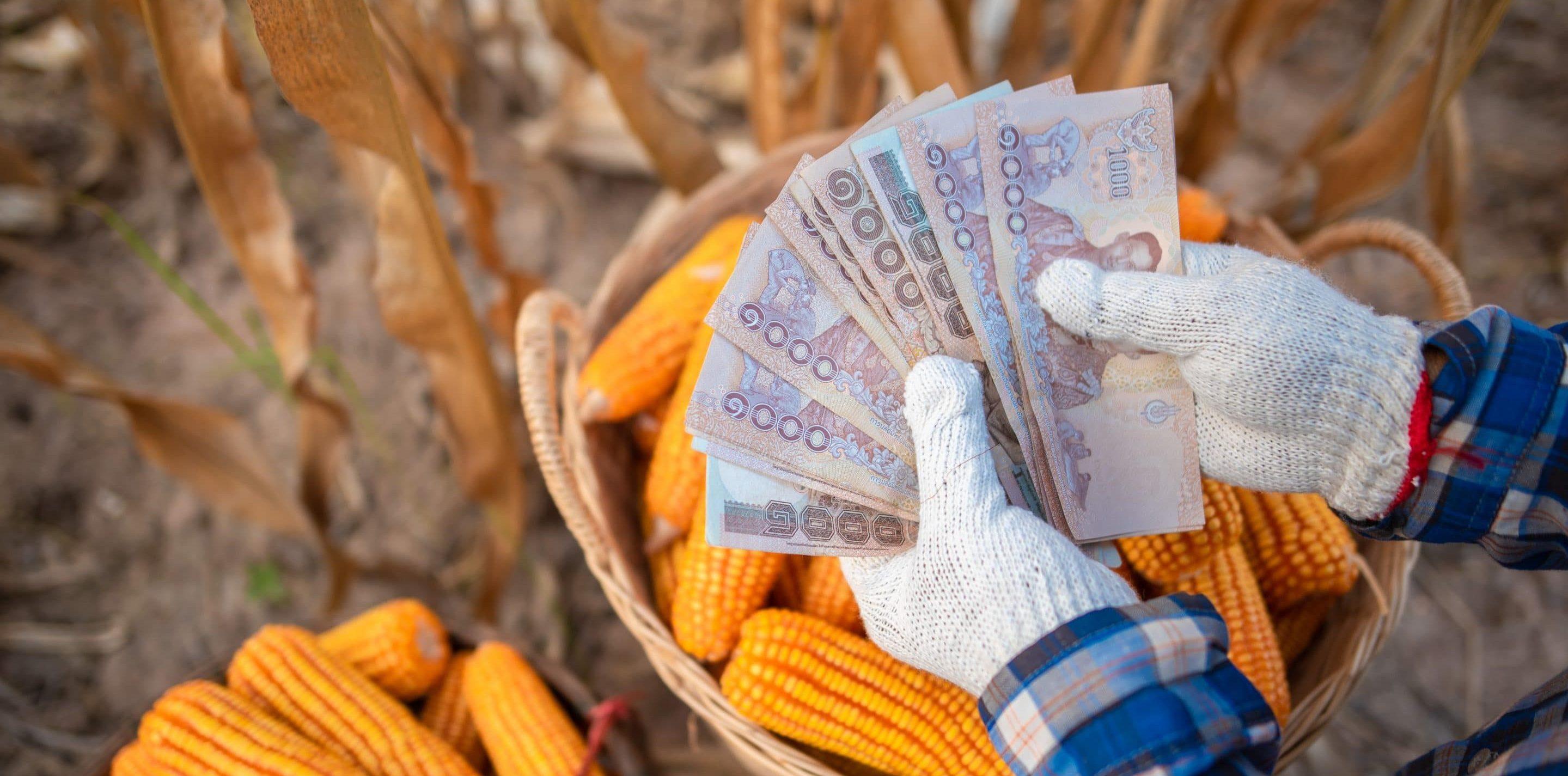 สินเชื่อเพื่อการเกษตร เงินสดทันใจ